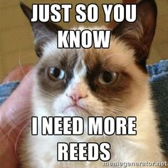 Grumpy Cat wants more reeds. -----  Get rid of cane reed issues! Play the world's best, premium, synthetic reeds for clarinet and saxophone! Fiberreeds play in any weather, sound like cane, and are incredibly durable (20x longer lasting), not to mention they are truly beautiful. Check them out: www.fiberreed.com and kickthemonster.com  #kickthemonster