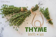 Thyme Uses & Benefits Natural Cold Remedies, Herbal Remedies, Thyme Benefits, Thyme Herb, Wellness Mama, Edible Mushrooms, Facial Steaming, Winter Survival