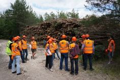 Researchers of CASTLE ITN Project in a French forest, speaking about sustainability. Credit: Frank Müller