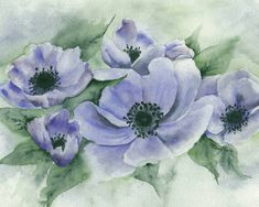 Original Watercolor Painting  Blue Anemones  8x10 by ImaginIt43. Only $75