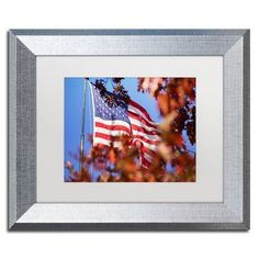 "Trademark Global 'Oak Leaf Glory' by Jason Shaffer Framed Photographic Print Matte Color: White, Size: 16"" H x 20"" W x 0.5"" D"