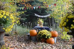 Love this outdoor fall tablesetting in thw woods!! Why Thanksgiving is Subversive {and How to Have the Best Thanksgiving Yet} #SunsetTurkeyDay