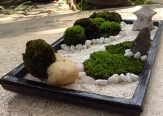 moss on the white stone