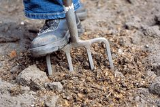 Renovate old lawns or create new grass areas by laying turf. Soil preparation is all-important to ensure the turf thrives once it is laid. Credit: RHS/Tim Sandall.