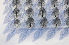 Le photographe Klaus Leidorf prend ces photos minimalistes
