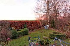mano's welt: 12tel blick im dezember 2013 Vineyard, Country Roads, Garden, Outdoor, December, World, Outdoors, Garten, Vine Yard