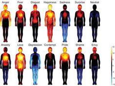 Les émotions sont associées à différents schémas d'émotion corporelle. De droite à gauche et de haut en bas : colère, peur, dégoût, joie, tristesse, surprise, neutre, anxiété, amour, déprime, mépris, fierté, honte, envie. Les couleurs représentent l'activation plus ou moins forte des régions du corps: de peu active (bleu clair) à très active (jaune).