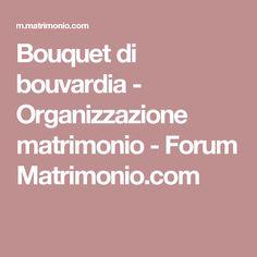 Bouquet di bouvardia - Organizzazione matrimonio - Forum Matrimonio.com