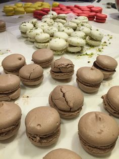 Macarons, Muffin, Cookies, Breakfast, Desserts, Food, Crack Crackers, Morning Coffee, Tailgate Desserts