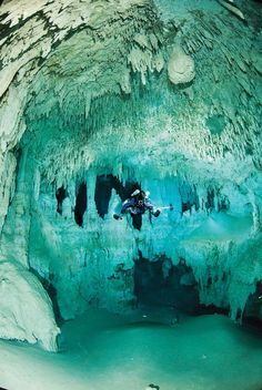 The 25 Best Freshwater Dive Sites Scuba Diving Scuba Diving Quotes, Best Scuba Diving, Scuba Diving Gear, Cave Diving, Underwater Caves, Underwater World, Diver Down, Fauna Marina, Scuba Diving Equipment