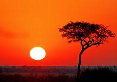 'Afrika erwacht - day starts in Africa' von Wibke Wo bei artflakes.com als Poster oder Kunstdruck $16.63