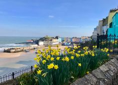 Tenby in the Spring - 2018