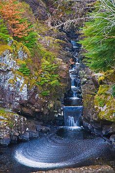 Rogie Falls ༺✿༺ Strathpeffer, Highland, Northern Scotland.