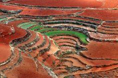 Ten noorden van Kunming ligt Hongtudi. Het is een gebied waar de aarde rood gekleurd is en waar de akkers op heuvels in terrasvorm aangelegd zijn. Door de verschillende kleuren van de gewassen die er verbouwd worden zie je in het landschap een prachtig geometrisch lijnenspel (bron: http://www.columbusmagazine.nl)