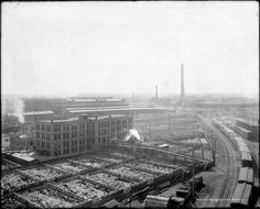 Denver's Union Stockyards 1915