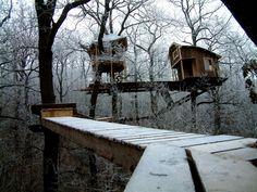 Snow Treehouse