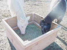 wooden pallet Horse Feeders Hay | Overall I am 100% happy with this type of feeder after using them for ...