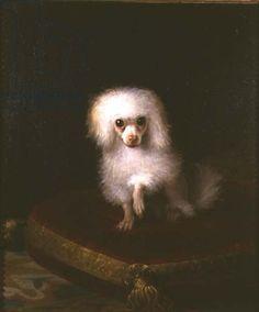 Poodle, 18th century
