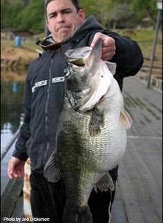 Wow that is a big bass