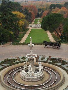 Campo del Moro Madrid, a espaldas del Palacio Real. Fotografía de Madrid Villa y Corte!!!!