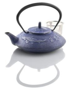 Japanese cast iron teapot? LOVE this one