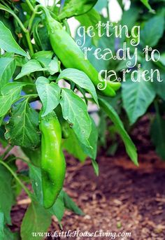 Getting Ready to garden tips and tricks.  How to start a garden