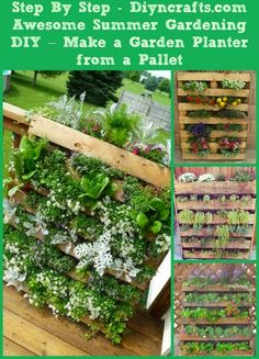 Alternative Gardning: Making a Garden Planter from Pallets