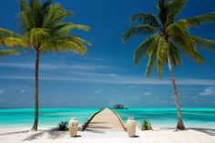 Amazing welcome at Atmosphere Kanifushi Resort! @A Singh Kanifushi #LoveMaldives @myvisitaldives #travel #maldives  http://www.mindfultravelbysara.com/en/2014/04/maldives-dream-come-true.html