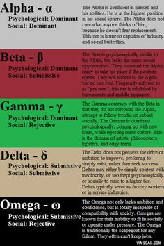 Personality Types - Alpha, Beta, Gamma, Delta, Omega - Think I am a Gamma. Writing Prompts, Writing Tips, Psych Test, Emotion, Which One Are You, Self Improvement, Self Help, Life Quotes, Knowledge
