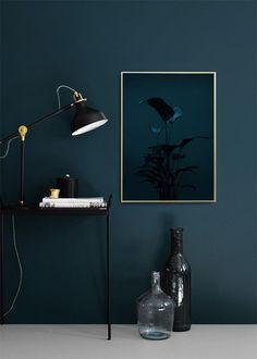 Black Plant, Poster in Group Prints & Art Prints at Desenio AB - Apartment Decor Beautiful Bedroom Designs, Beautiful Bedrooms, Dark Interiors, Office Interiors, Room Colors, Wall Colors, Living Room Decor, Bedroom Decor, Dark Walls