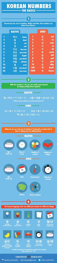 YES! I can never remember when to use Native and when to use Sino!  Learn the basics of Korean numbers with this handy infographic
