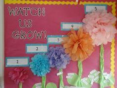 Accelerated reader board..such a cute idea for a garden themed classroom.