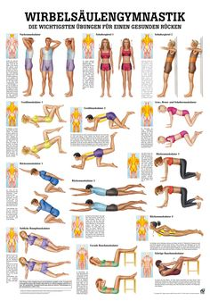 Wirbels ulengymnastik Yoga Yogamatten 038 Yoga-Zubeh r Wirbels ulengymnastik Yoga Yogamatten 038 Yoga-Zubeh r Lydia Doxa lydiadoxa beauty Wirbels ulengymnastik R diger AnatomieWirbels ulengymnastik Poster x nbsp hellip mujer sentadillas Fitness Workouts, Yoga Fitness, Tips Fitness, Sport Fitness, At Home Workouts, Fitness Motivation, Health Fitness, Muscle Fitness, Diets Plans To Lose Weight