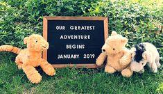 Pregnancy announcement- Classic Pooh- so so cute cutewinniethepooh Fall Baby Announcement, Baby Announcement Pictures, Baby Announcements, Winnie The Pooh Nursery, Winne The Pooh, Baby Pictures, Baby Photos, Little Mac, Baby Mine