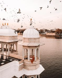 Our India itinerary for 3 weeks in India, including: the cities we visited, FAQs, and what we'd do differently. Also, a recommended 2 week India itinerary. Places To Travel, Travel Destinations, Places To Visit, Udaipur India, India India, Jaipur, India Palace, Delhi India, Visit India