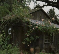Magic Places, Theme Nature, Cottage In The Woods, Nature Aesthetic, Aesthetic Grunge, Forest Fairy, Forest House, Architecture, Aesthetic Pictures