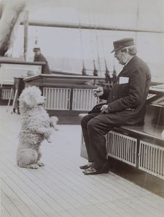 Poodle on board an unknown yacht. National Maritime Museum.