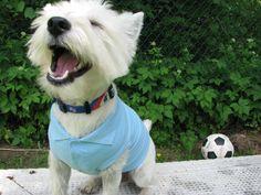 I love soccerrrrr!