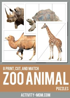 FREE printable zoo animal puzzles for Kids. Your toddlers and preschoolers will love the challenge of putting together the pieces of each zoo animal. Source by momandkiddo and me activities Zoo Activities Preschool, Zoo Animal Activities, Preschool Scavenger Hunt, Animal Crafts For Kids, Toddler Learning Activities, Sorting Activities, Travel Activities, Montessori, Animal Puzzle