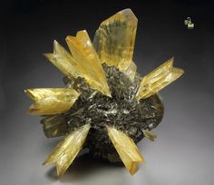 Twinned Gypsum floater | #Geology #GeologyPage #Mineral Locality: Red River Floodway Winnipeg Manitoba Canada Size: 115mm x 87mm x 71mm Photo Copyright Quebul Fine Minerals Geology Page www.geologypage.com