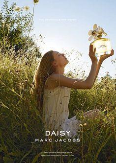 Daisy Treats for Tweets #MJDAISYCHAIN