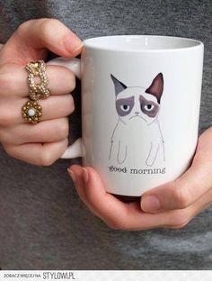 groumpie cat @Gina Gab Solórzano Gab Solórzano Megna