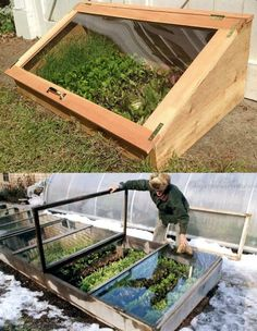 45 BEST tutorials, free building plans & ideas on how to build easy DIY greenhouses, simple cold frames, garden tunnels & hoops with low cost materials! Diy Greenhouse Plans, Backyard Greenhouse, Cold Frame Gardening, Gardening Tips, Vegetable Garden Design, Cold Frames, Garden Beds, Garden Projects, Outdoor Gardens