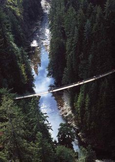 Capilano Suspension Bridge – located in Vancouver, British Columbia, Canada. It is the most popular tourist charms. Capilano bridge length is 136 meters and a height of 70 meters. It was originally built in Suspension Bridge Vancouver, Vancouver City, Vancouver Island, Places To Travel, Places To See, Travel Destinations, Canada Vancouver, Vancouver Travel, Vacation Places