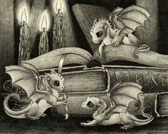 Baby dragons, books, candles... what more could you ask for?