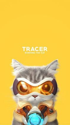 Overwatch Cat Tracer Overwatch Cats, Overwatch Tracer, Overwatch Memes, Tracer Art, Soldier 76, 10 Points, Paladin, Cute Cats, Anime
