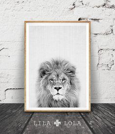Lion Print, Nursery Animal Wall Art, Kids Printable Art, Black and White Decor, Safari African Animal Print, Lion Photo Wall Art