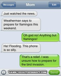 I'd be terrified if I were having to prepare for flamingos. I don't like those type of birds either.
