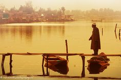 One golden morning at Dal Lake, Kashmir, India.