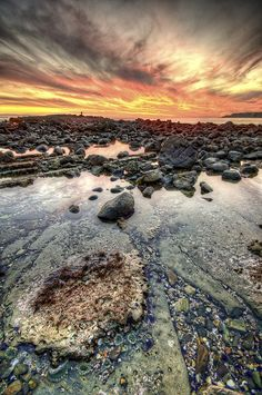 Sunset at Rancho Palos Verdes, Los Angeles, California.  What is it? by Neil Kremer
